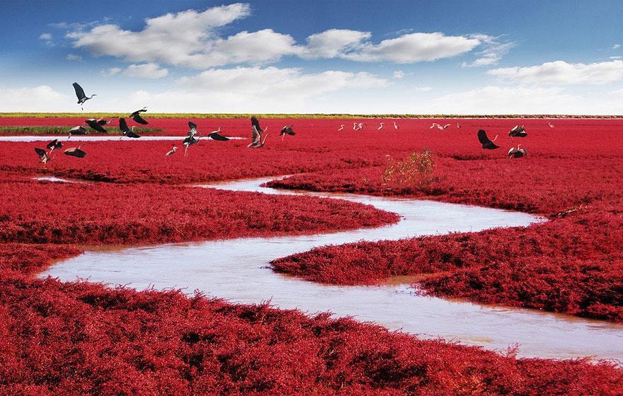 World's Best Landscapes