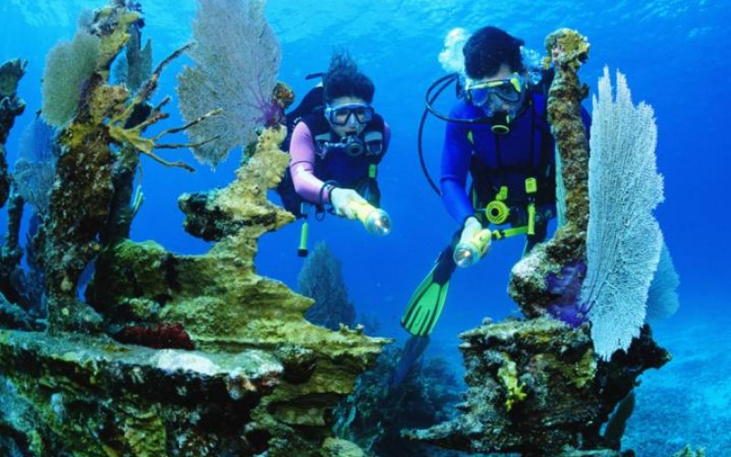 20 Best Things to Do in Naples, Florida
